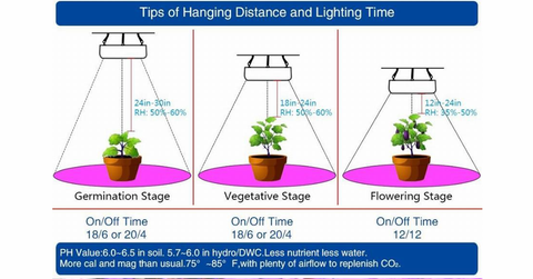Growing Plants With Led Grow Light Led Factory Mart