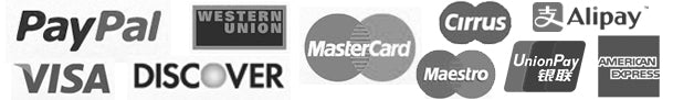 PayPal VISA Mastercard Cirrus Maestro Western Union AliPay UnionPay American Express