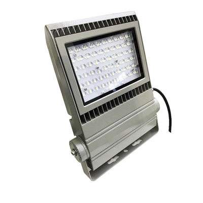 50W Module LED Flood Light