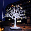 Solar Power LED String Light Holiday Fairy Lamp