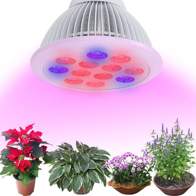 Pair 24W E26 LED Plant Grow Light Bulb Red Blue Indoor Hydroponic Greenhouse - LED Factory Mart