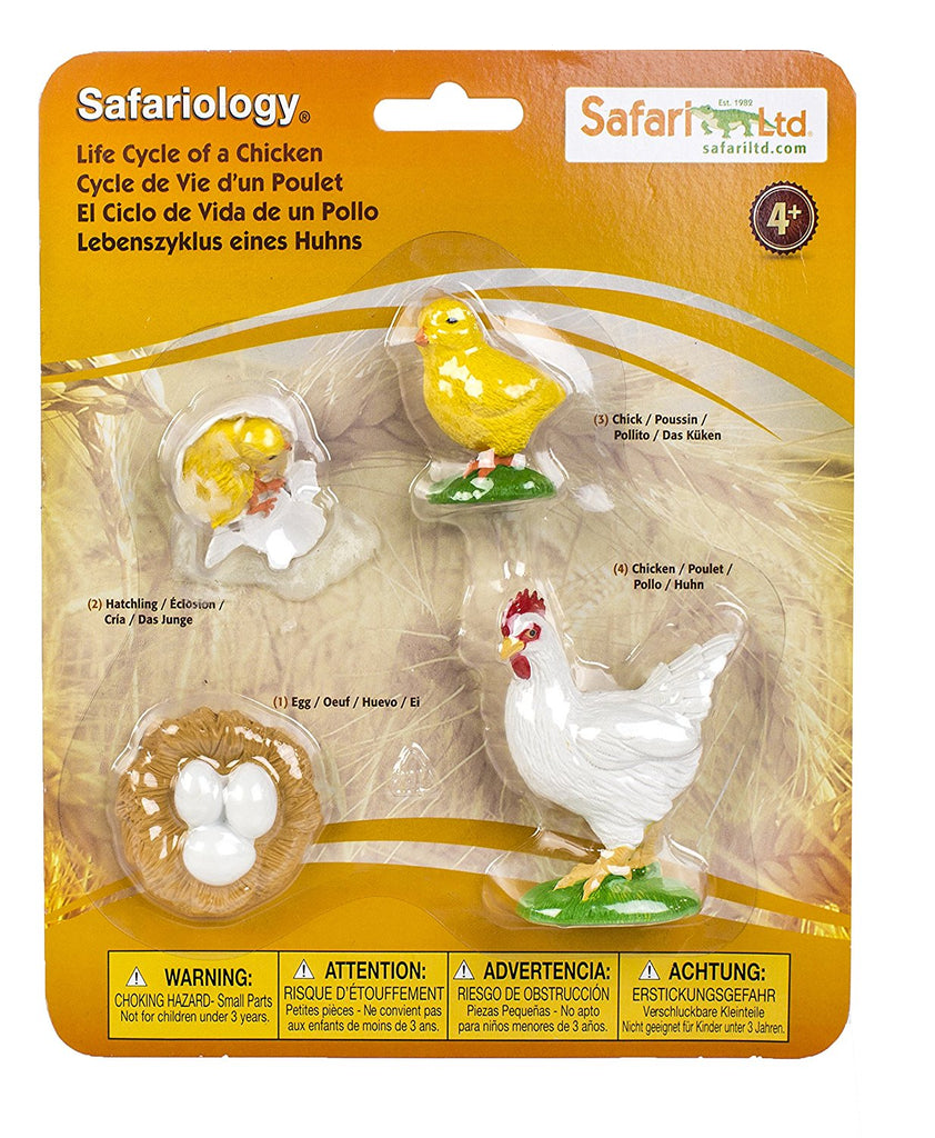 Safari Life Cycle Chicken - educationaltoys.ie