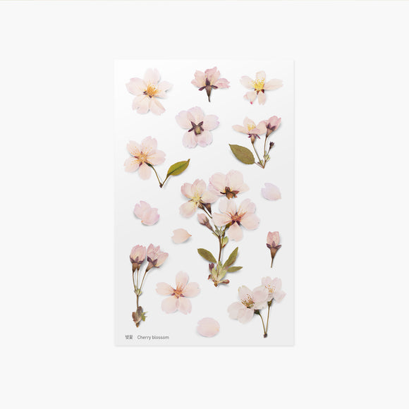 Appree Pressed Flower Sticker // Cherry Blossom