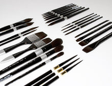 Load image into Gallery viewer, Silver Brush Black Velvet Brush - Liner