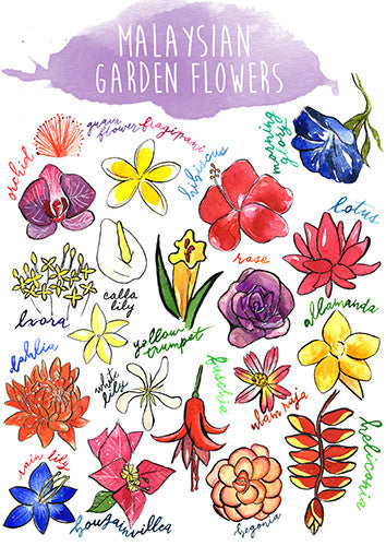 Malaysian Garden Flowers Postcard  - Stickerrific