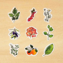 Load image into Gallery viewer, Ponchise - Herb Garden Flake Sticker
