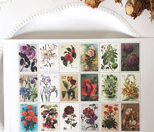 Load image into Gallery viewer, Botanical Postal Stamp Stickers