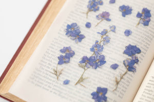 Appree Pressed Flower Sticker // Larkspur