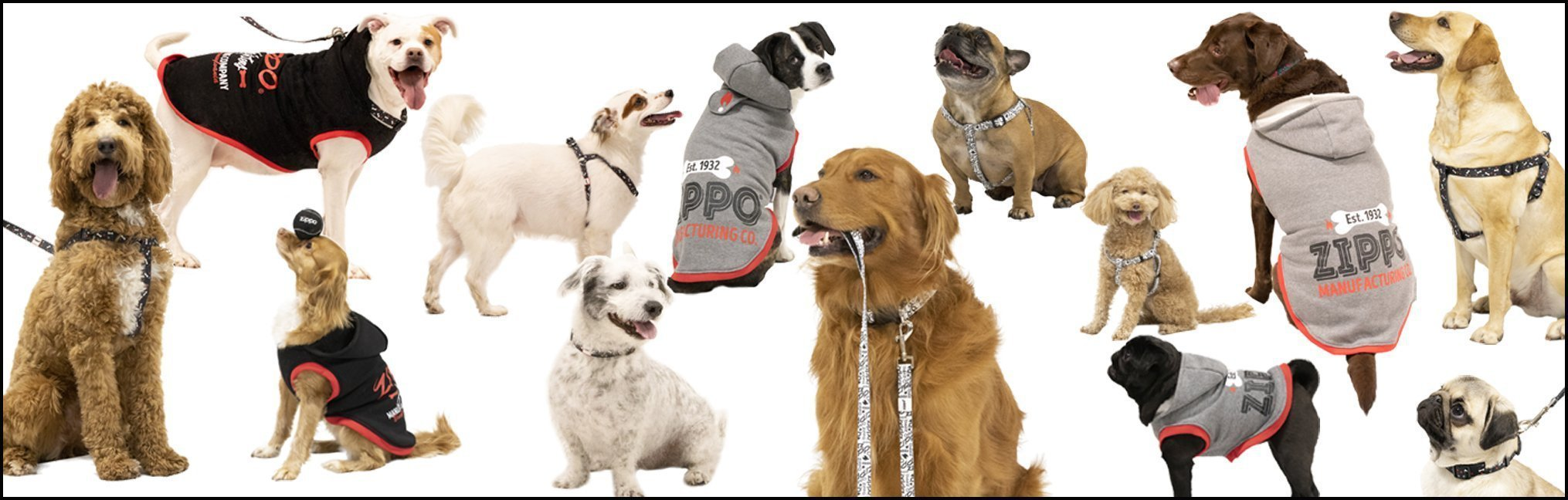 Banner for the Pet Gear collection