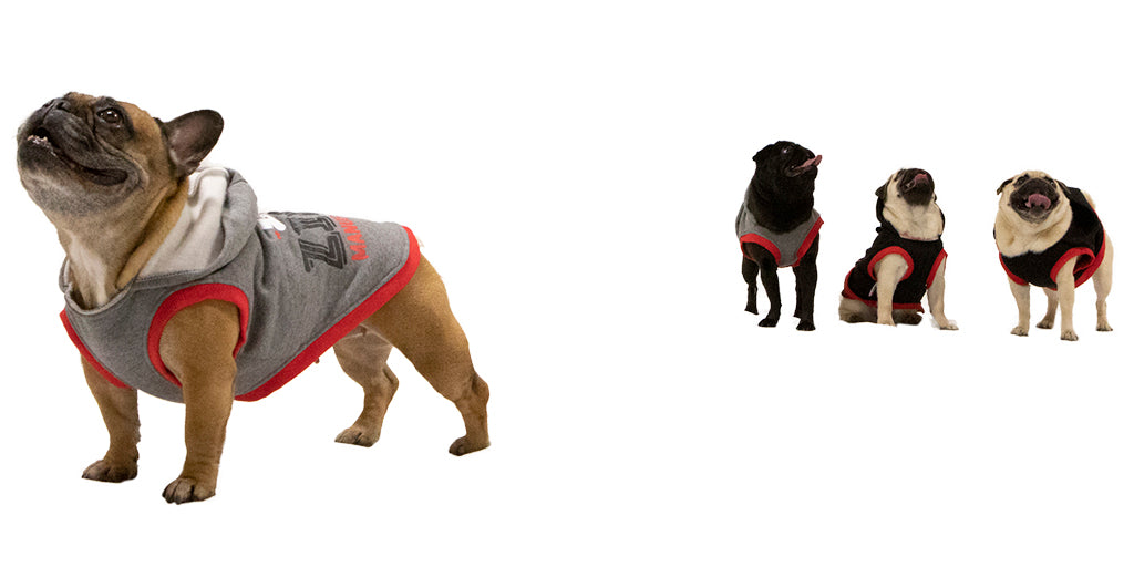 Pet Sweatshirts