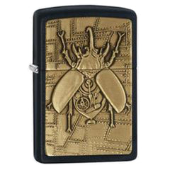 Steampunk Beetle Case