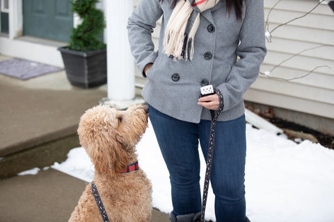Lifestyle Image of woman holding a 6-Hour Refillable Hand Warmer, outside walking her dog