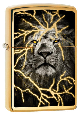 254B-063652 High Polish Brass Lion Windproof Lighter