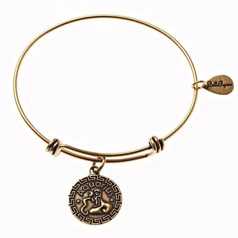 Aquarius Zodiac Expandable Bangle Charm Bracelet in Gold - BellaRyann