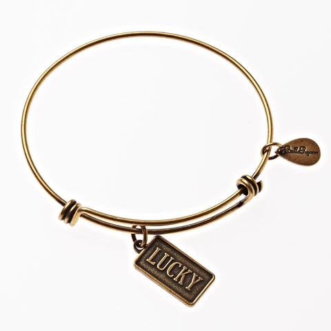 Lucky Expandable Bangle Charm Bracelet in Gold