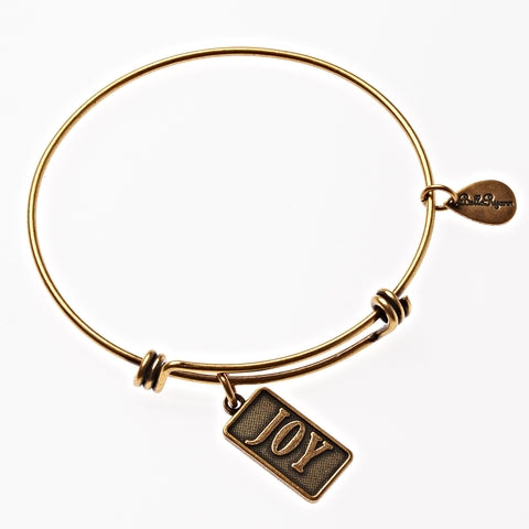 Joy Expandable Bangle Charm Bracelet in Gold - BellaRyann