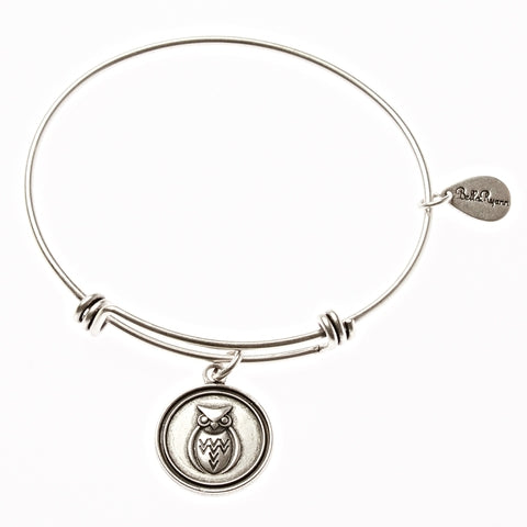 Owl Expandable Bangle Charm Bracelet in Silver