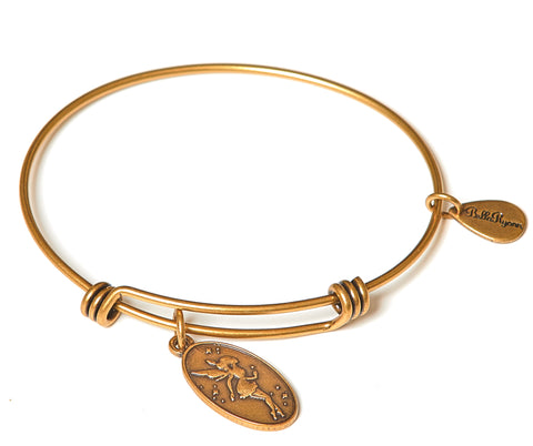 Fairy Expandable Bangle Charm Bracelet in Gold - BellaRyann