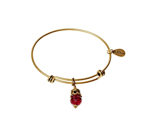 January Expandable Bangle Charm Bracelet in Gold - BellaRyann