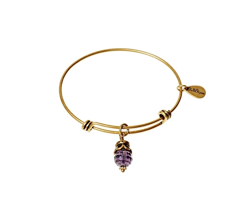 February Birthstone Expandable Bangle Charm Bracelet in Gold - BellaRyann