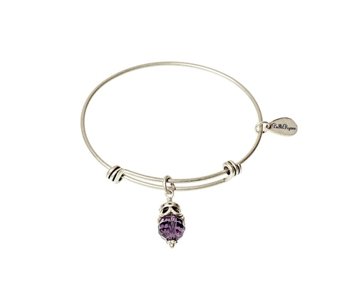 February Expandable Bangle Charm Bracelet in Silver - BellaRyann