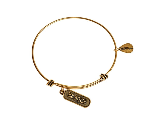 Be Nice Expandable Bangle Charm Bracelet in Gold - BellaRyann