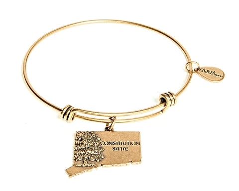 Connecticut Expandable Bangle Charm Bracelet in Gold - BellaRyann