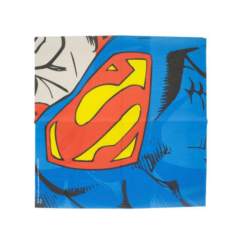 DC Comics Dress Up Napkins Superman