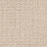 404250 Line By Line Sahara Pk Lifestyles Fabric