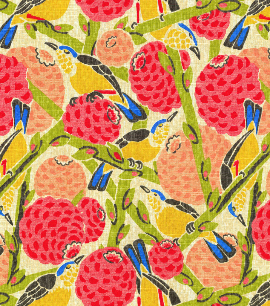 590790 So Fly Guava Srd Pk Lifestyles Fabric