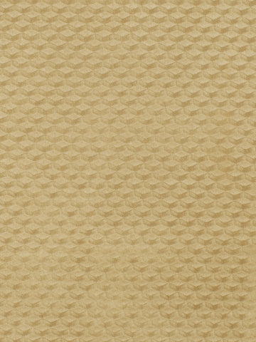 Charleston Protector Buff Contemporary Fabric