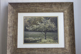 Golden Apple Tree Photography - Framed Woodland Art Print