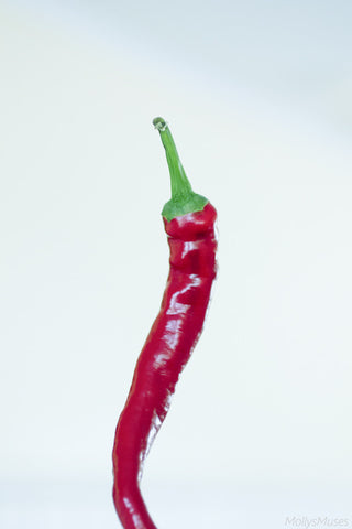 Still Life Photography - Red Cayenne Pepper - Kitchen Wall Art