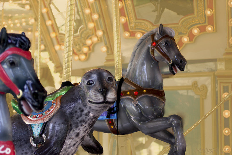 Dreamy Surreal Carousel Photography - Sea Lion Horse