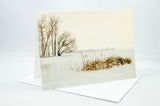 Greeting card from a photograph of cattails on the shoreline.