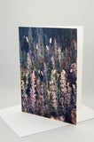 Greeting Card - Fall Meadow, Backlit