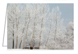 A photo greeting card of trees and benches covered in frost.