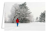 A photo greeting card of a woman cross-country skiing.