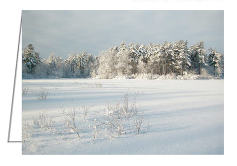 Mud Lake. The frozen snow-covered lake is beautiful after a fresh snowfall had decorated the trees..
