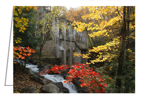 Greeting Card - Fall foliage in Gatineau Park at Willson's  Ruins. Gatineau Park is in the province of Quebec, not far from Ottawa, Ontario.