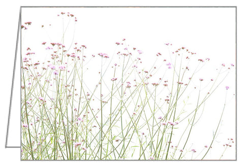 Greeting Card - Small mauve flowers on a white background.