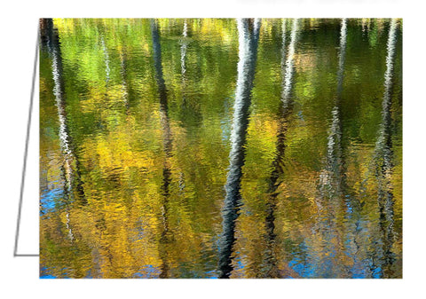 A photo greeting card - Beaver Pond Reflections, Gatineau Park, Quebec