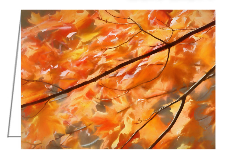 Maple Leaves on Fire - Greeting Card