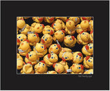 Matted Print - Tens of thousands of rubber duckies race down the Rideau Canal in Ottawa, Ontario