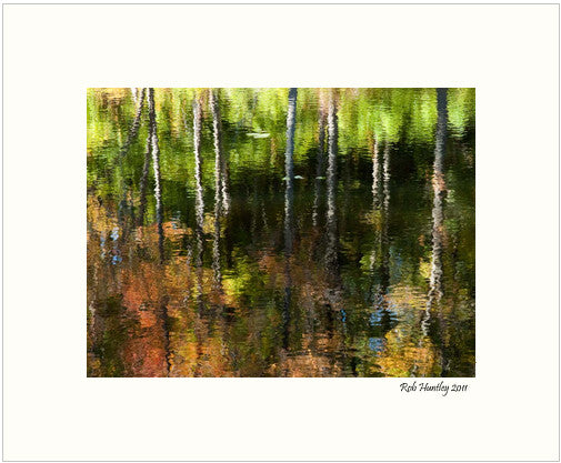 Matted Print - Beaver Pond Reflections, Gatineau Park, Quebec.