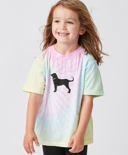 Lil Kids Cotton Candy Spiral Tie Dye Shortsleeve Tee
