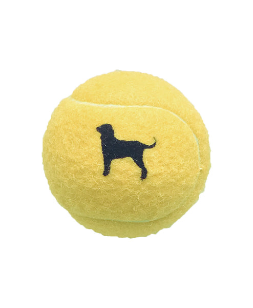 BD DOG TENNIS BALL