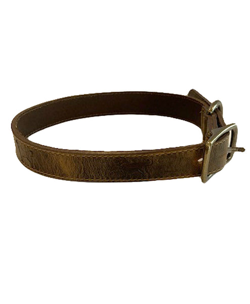Embossed 1 inch Leather Collar
