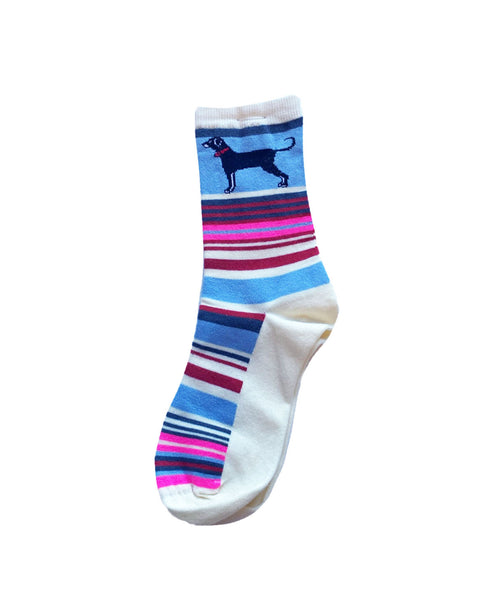 Adult Menemsha Stripe Sock