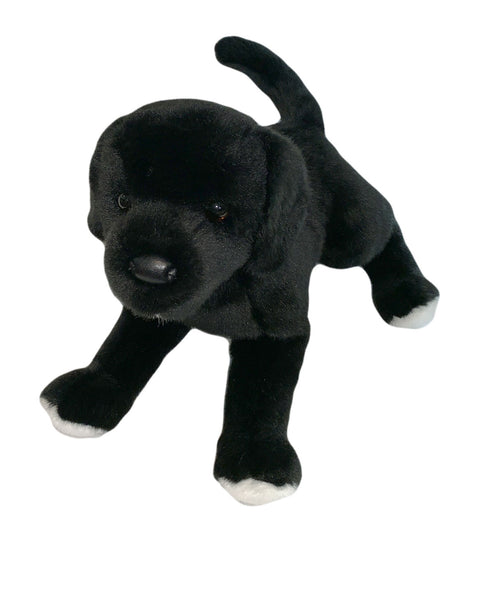Classic Black Dog Puppy